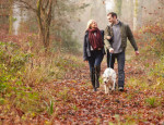depositphotos_59344933-stock-photo-couple-walking-dog-in-forest